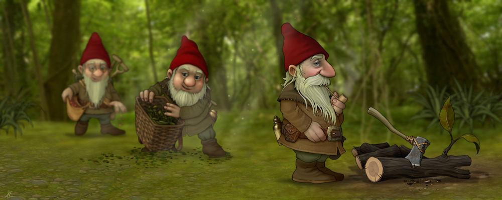 Wood Gnomes